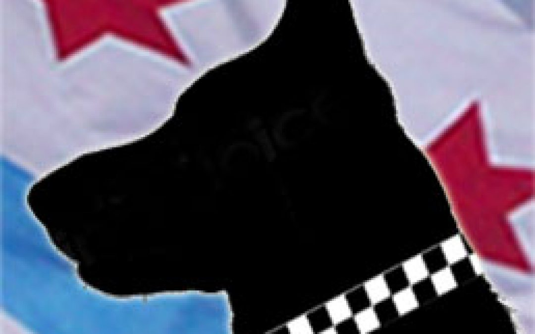 Police Canine   Rex III | Star #DNA